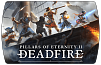 Pillars of Eternity 2 Deadfire (ключ для ПК)