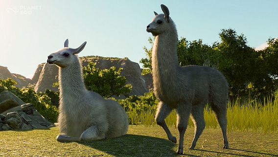 Planet Zoo – South America Pack (ключ для ПК)